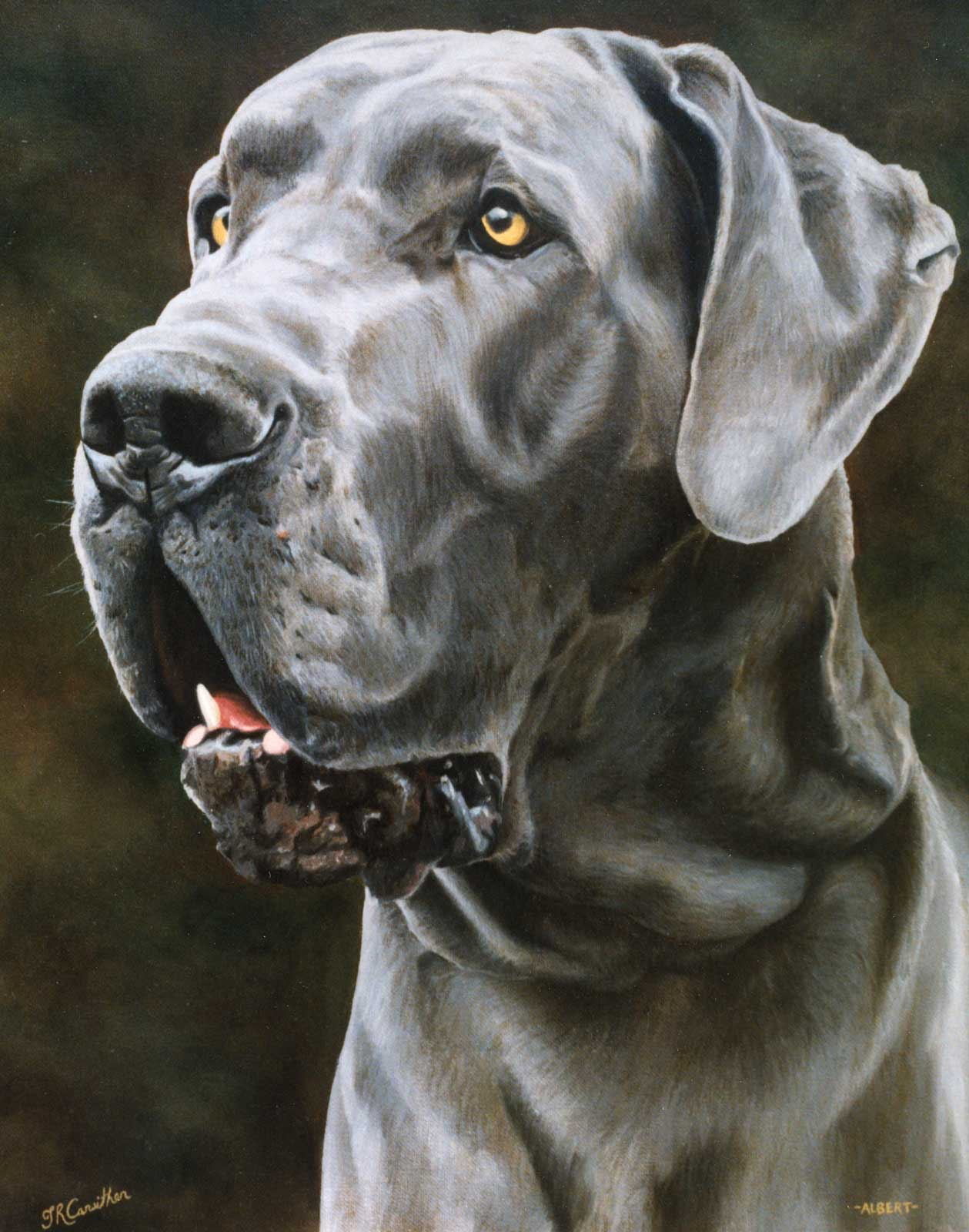 Great Dane dog portrait oil painting on canvas