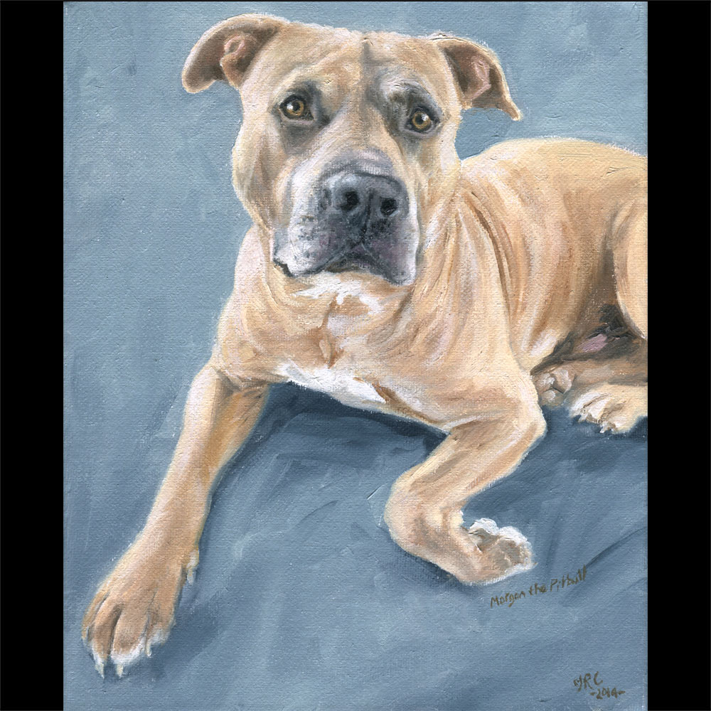 Pit bull terrier portrait oil painting 1 on canvas