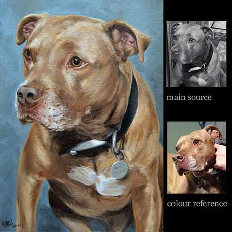 Pit bull portrait painting dog 3