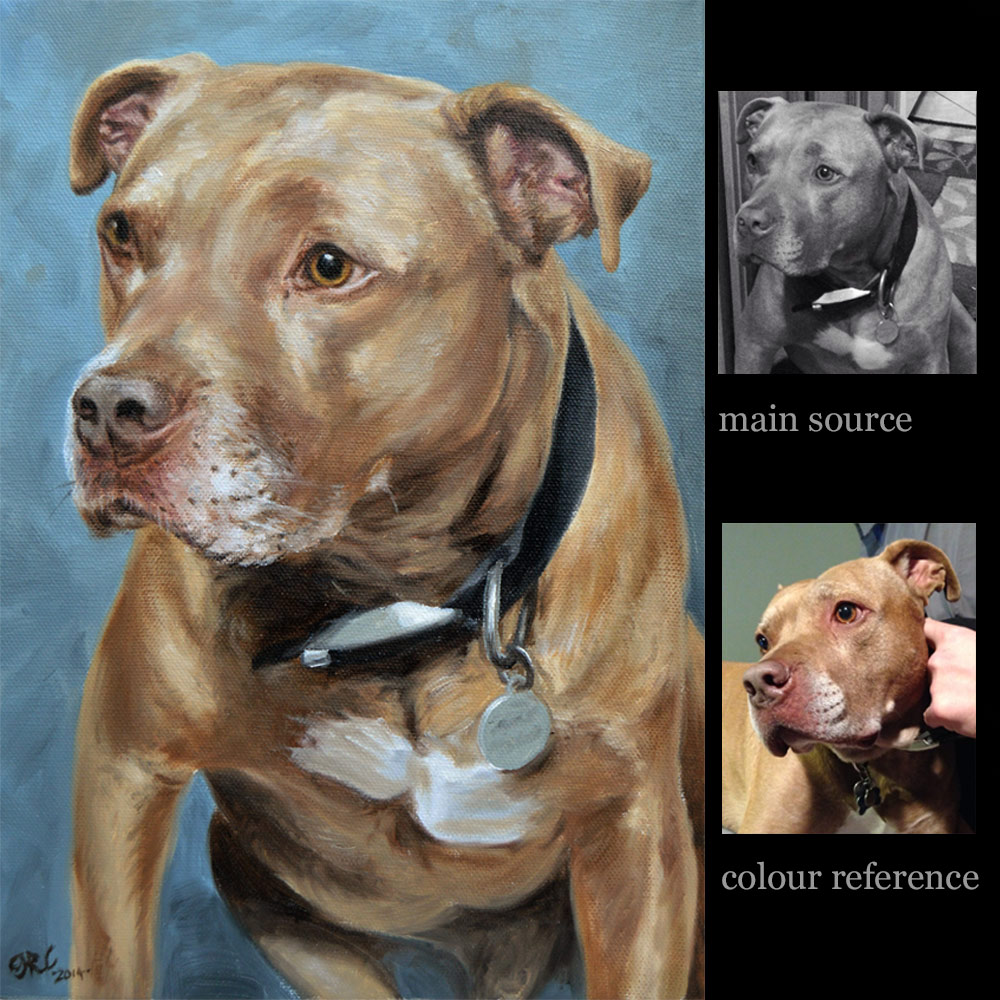 Pit bull Terrier portrait painting dog 3 - oils on canvas