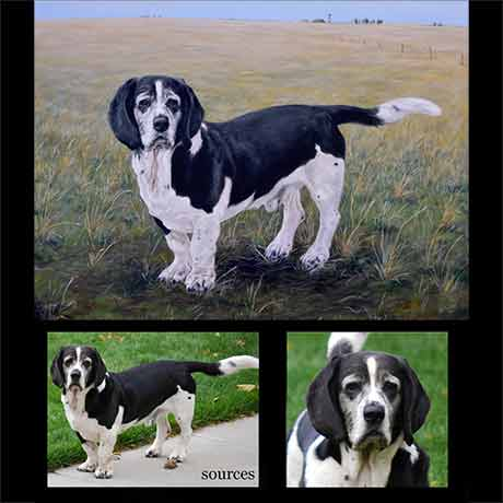 Bassett dog portrait painting 1 - oils on canvas
