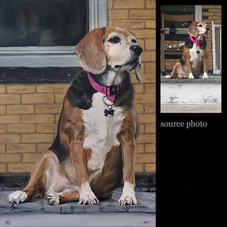 Beagle dog portrait painting 1 - oils on canvas