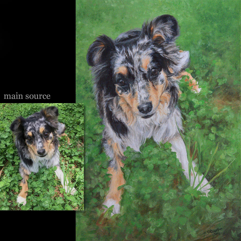 Dog portrait painting 12 - oils on canvas
