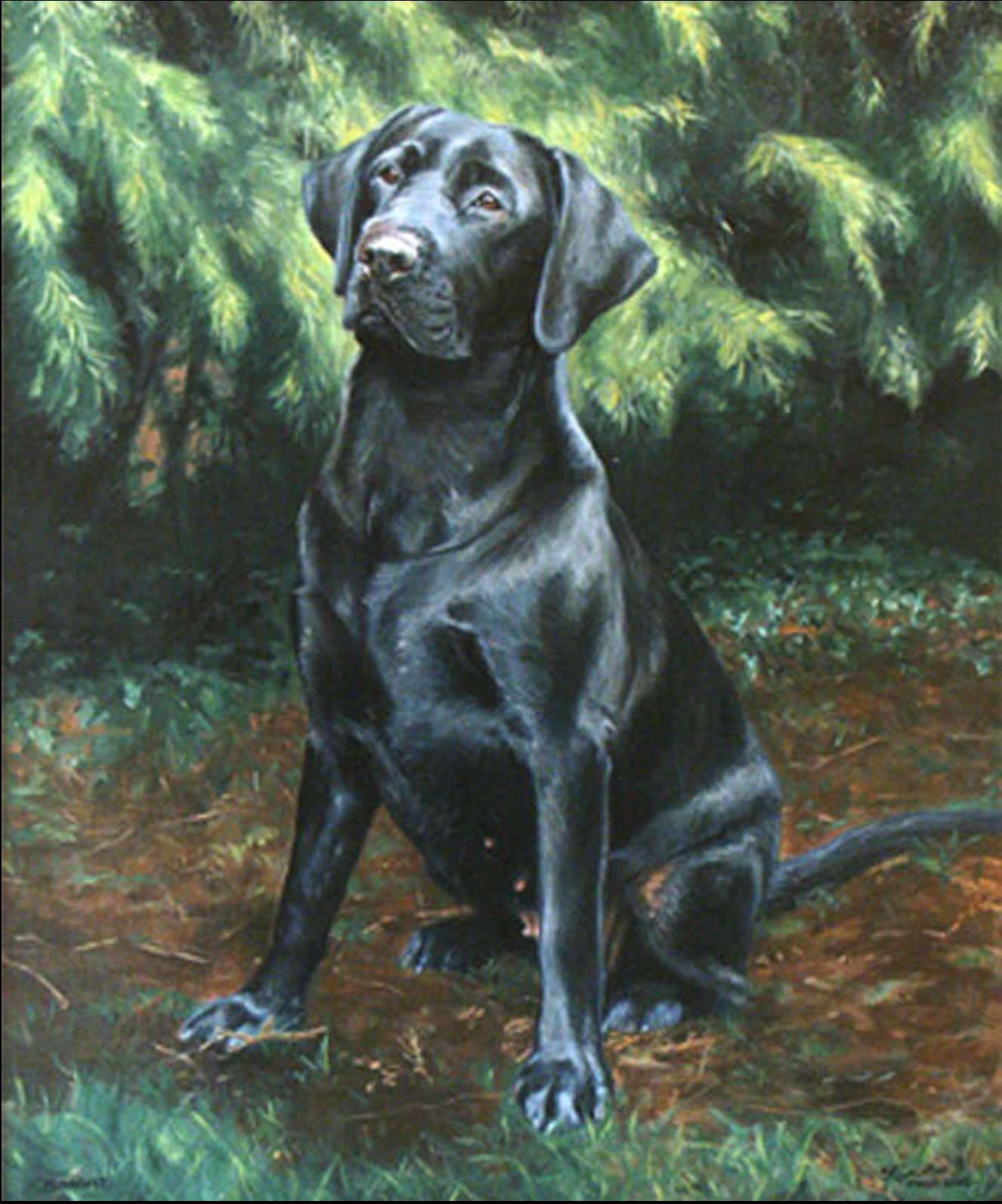 Black Labrador dog portrait oil painting on canvas