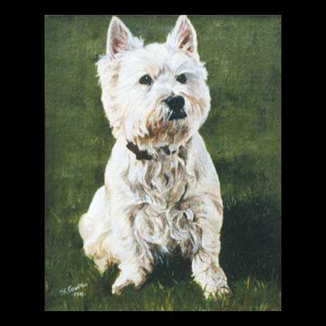 Westy dog portrait painting, oil paint on canvas