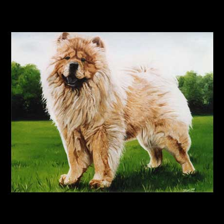 Chow Chow dog portrait painting, oil paint on canvas