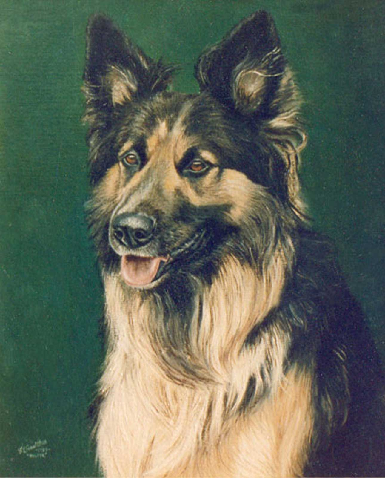 German Shepherd dog portrait oil painting on canvas