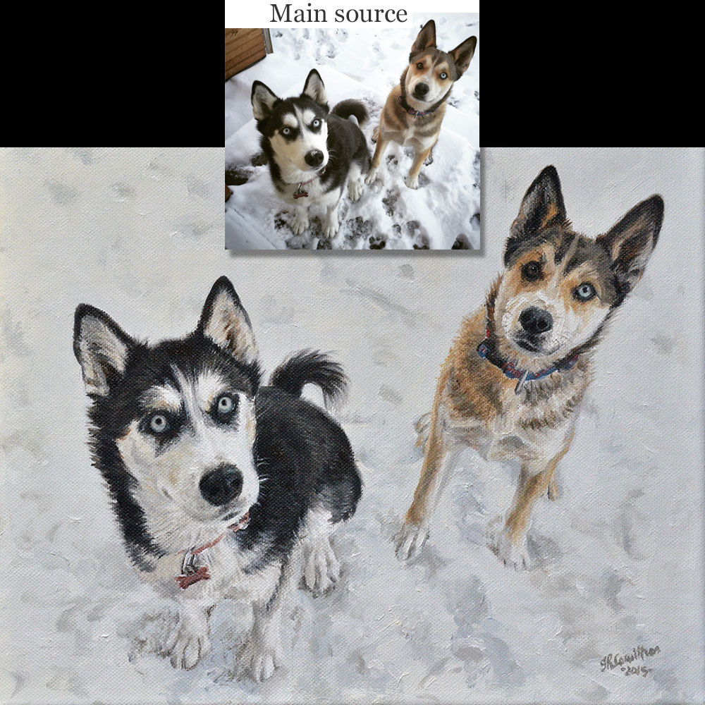 Huskies dog portrait 1, oil paint on canvas