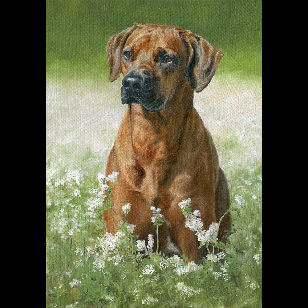 African Ridgeback portrait oil painting 1 on canvas