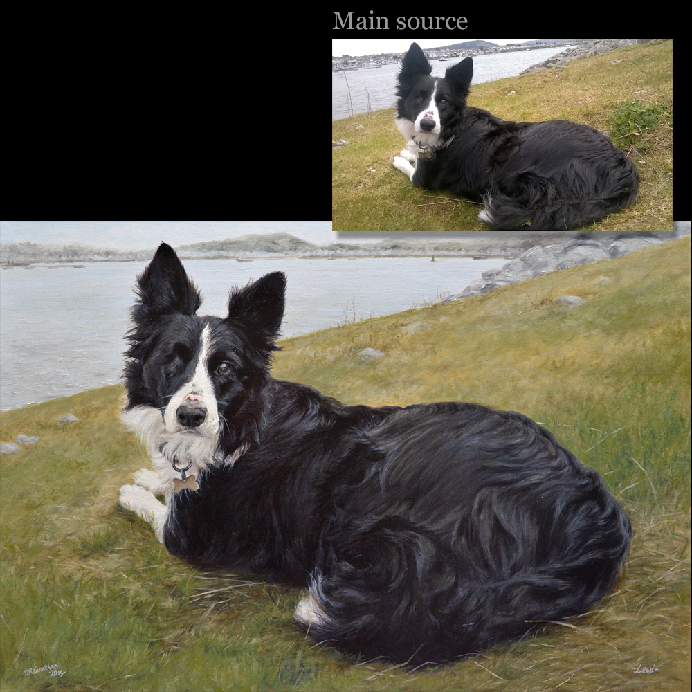 Sheepdog portrait 2 oil painting on canvas