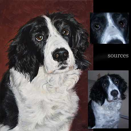 Spaniel dog portrait painting 1 - oils on canvas