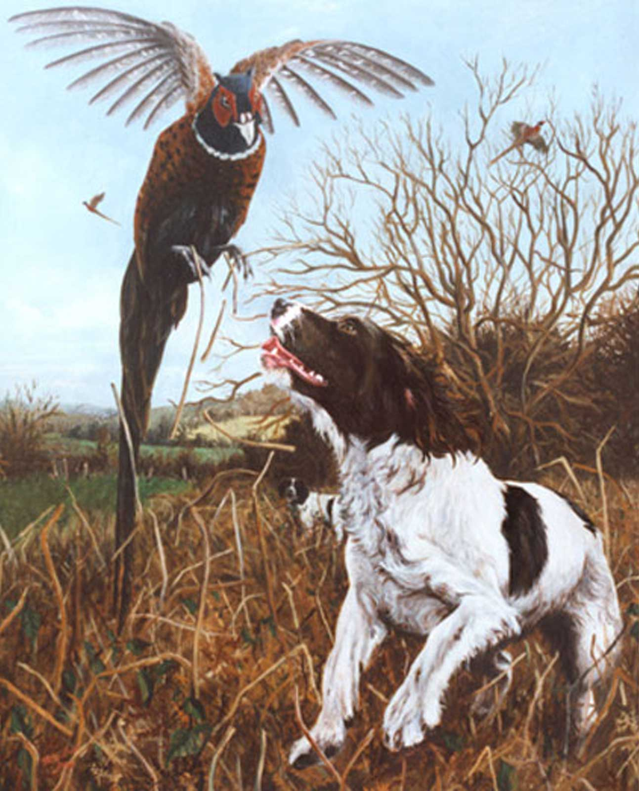 Springer Spaniel in the field dog portrait oil painting on canvas