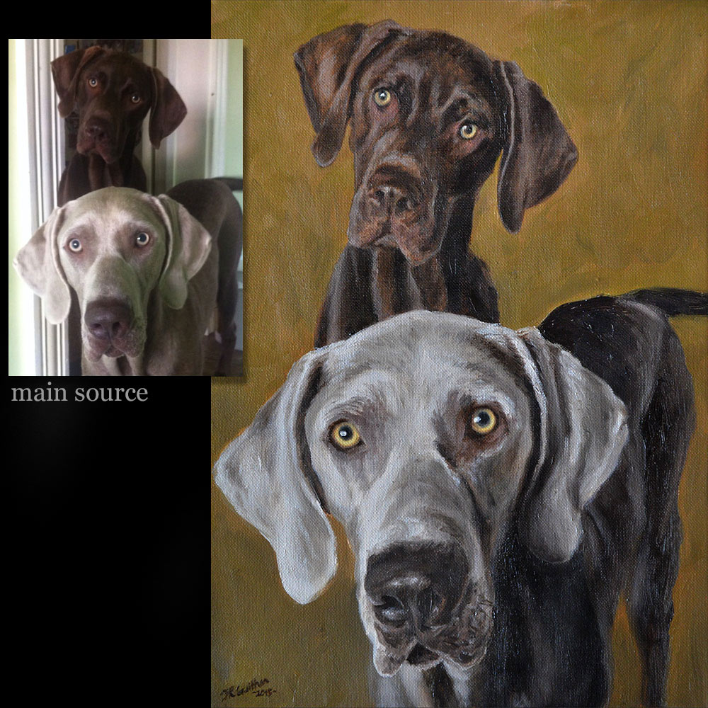 Weimaraner portrait painting dogs 1- oils on canvas
