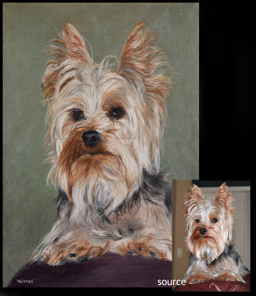 Yorkshire terrier dog portrait 2 - oils on canvas