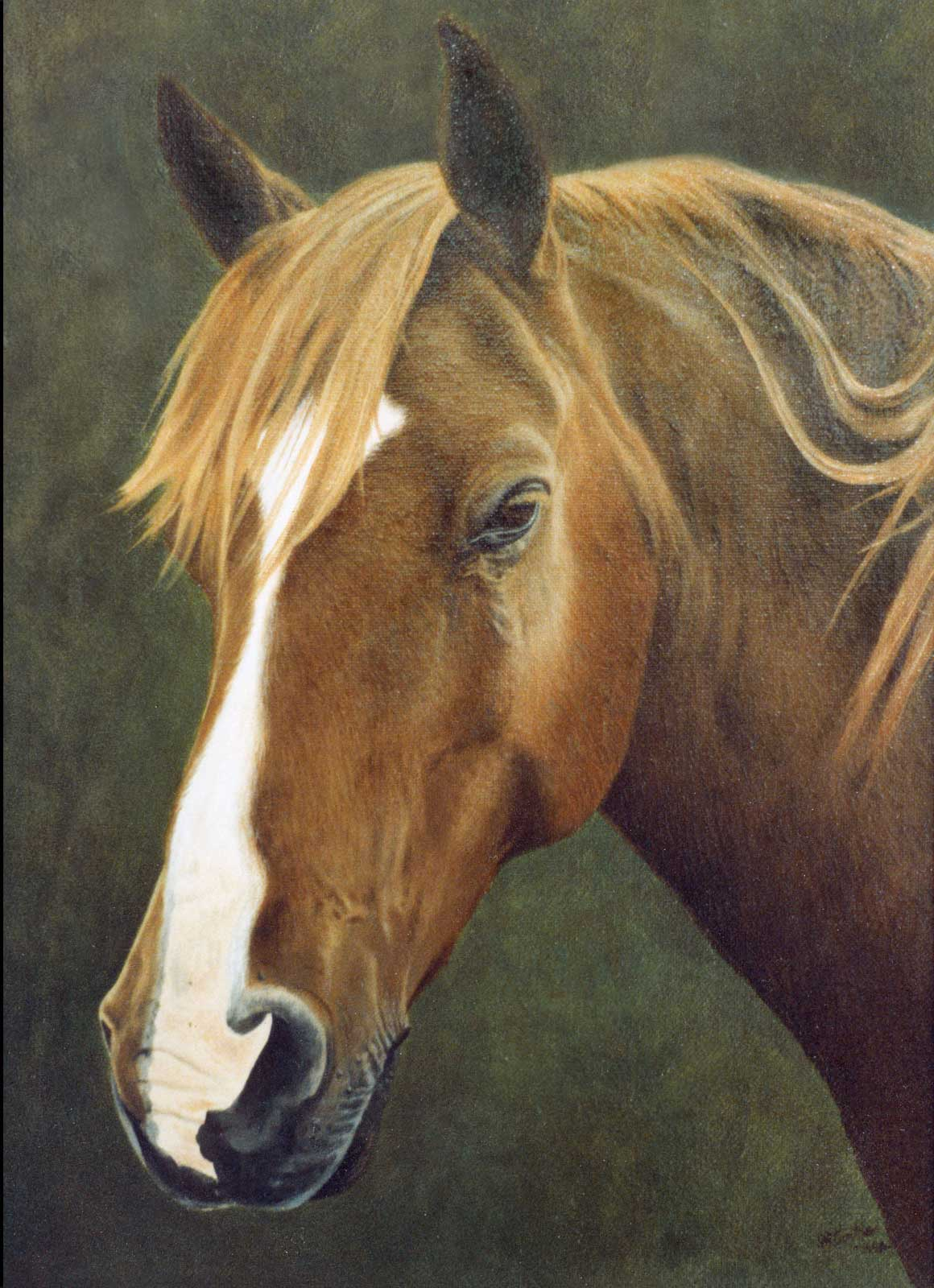 Horse portrait oil painting on canvas