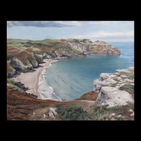 Bossiney, Cornwall  landscape painting oil paint on canvas