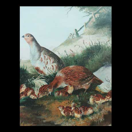 Partridges painting, oil paint on canvas