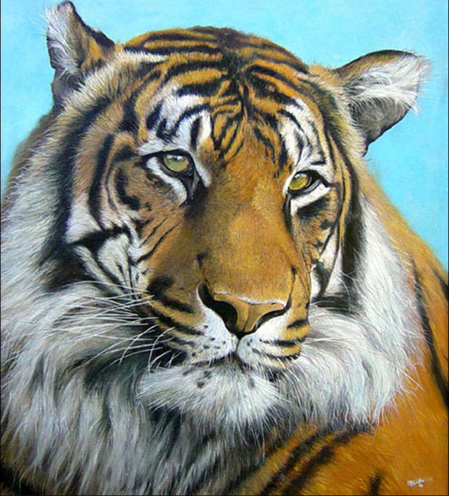 Tiger oil painting on canvas